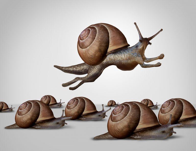 Agile Unternehmen brauchen Agile Coaches