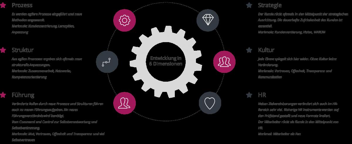 Agile Organisationen entwickeln sich in sechs Dimensionen